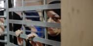 """""""هيئة الأسرى"""": الأسيرات في سجن """"الدامون"""" يهددن بخطوات تصعيدية احتجاجا على ظروفهن"""