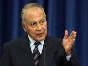 أبو الغيط: السلام العادل لا يُمكن تحقيقه بتجاهل حقيقة الاحتلال