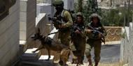 القدس: الاحتلال يواصل حملته الواسعة في مخيم شعفاط لليوم الثالث