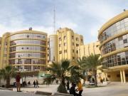 خلال مشاركة حركة الشبيبة الفتحاوية في احتفالات التخرج الثالثة والعشرون بجامعة الأزهر.