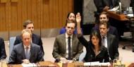 """""""الفيتو"""" ضد القضية الفلسطينية ثابت من الثوابت الأميركية"""