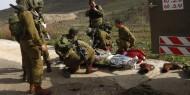17 جنديا ومستوطنا إسرائيليا قتلوا خلال عام