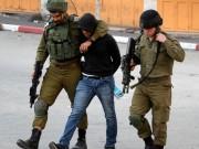 الاحتلال يعتقل شابين من الخليل