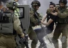 الاحتلال يعتقل ثلاثة فتية من الخليل