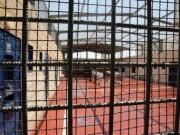 """إصابة 17 أسيرا في سجن """"النقب"""" بفيروس كورونا"""