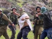 مستوطنون يهاجمون رعاة الأغنام بالحجارة في يطا جنوب الخليل