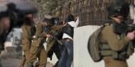 """""""هيئة الأسرى"""": جيش الاحتلال يُعنف أربعة أسرى ويتعمد إهانتهم أثناء عملية اعتقالهم"""