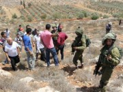 شهيد برصاص الاحتلال في بيت دجن شرق نابلس