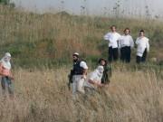مستوطنون يهاجمون قرية التوانة ويرشقون الأهالي ورعاة الماشية بالحجارة