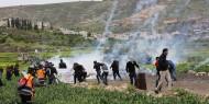 إصابات بالاختناق خلال اعتداء الاحتلال على المشاركين في فعالية قطف الزيتون غرب جنين