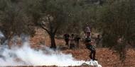 نابلس: إصابات خلال مواجهات مع الاحتلال في بيتا وبيت دجن